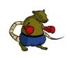 boxer-120.jpg